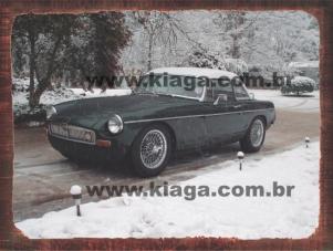 Placa Decorativa Carro Vintage Neve