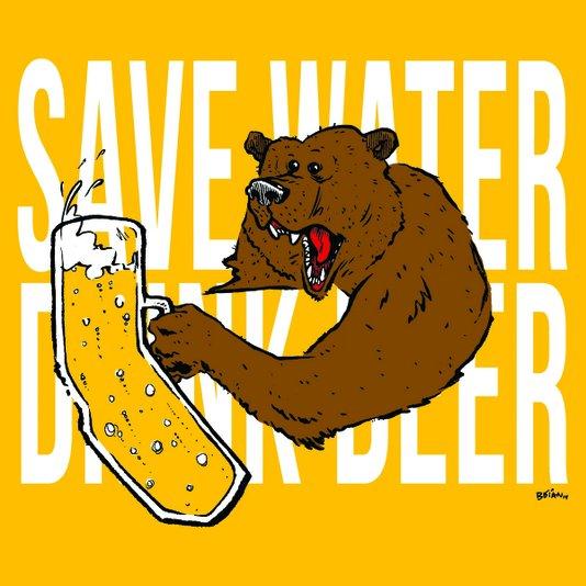 Placa Decorativa Economize Água, Beba Cerveja