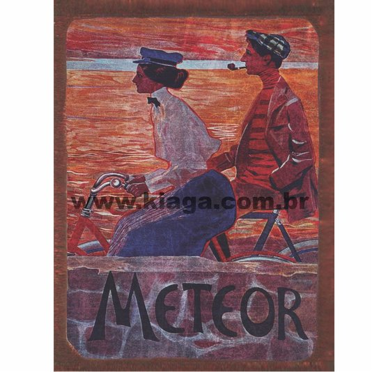 Placa Decorativa Vintage Meteor