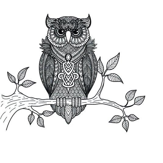 Placa Decorativa Desenho da Coruja Preto e Branco