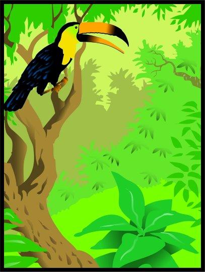 Placa Decorativa Tucano na Natureza