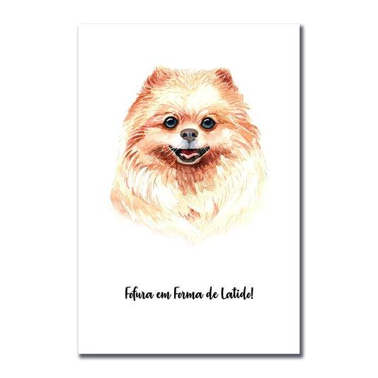 Placa Decorativa Cachorro Spitz Alemão ou Lulu Da Pomerânia Caracaterísticas da Raça