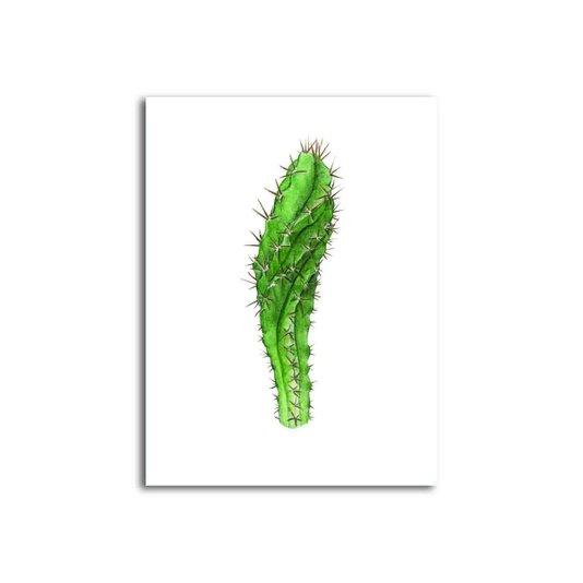 Placa Decorativa Cactus com fundo Branco