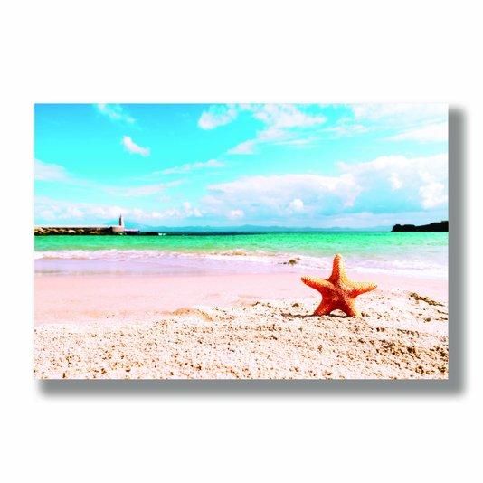Placa Decorativa Coleção Mar Estrela Do Mar