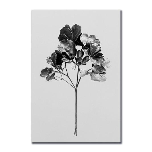 Placa Decorativa Papel de Parede Folhagem Natureza