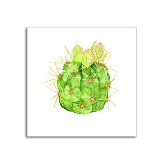 Placa Decorativa Planta Cactus com Flores