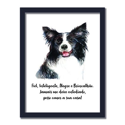Quadro Decorativo Cachorro Border Collie Características da Raça