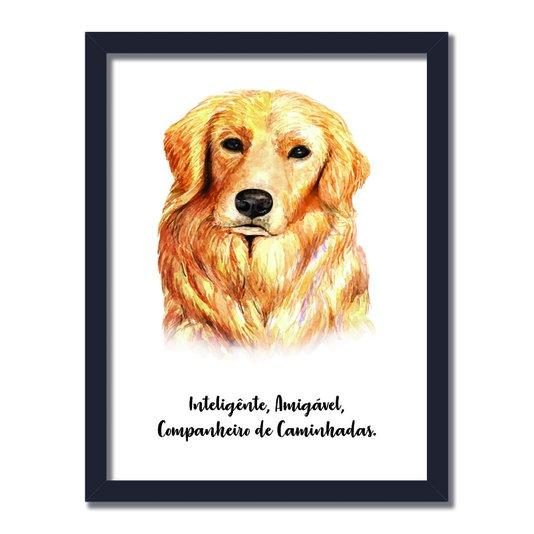 Quadro Decorativo Cachorro Golden Retriever Características da Raça