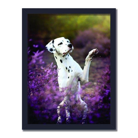 Quadro Decorativo Foto Cachorro Dalmata