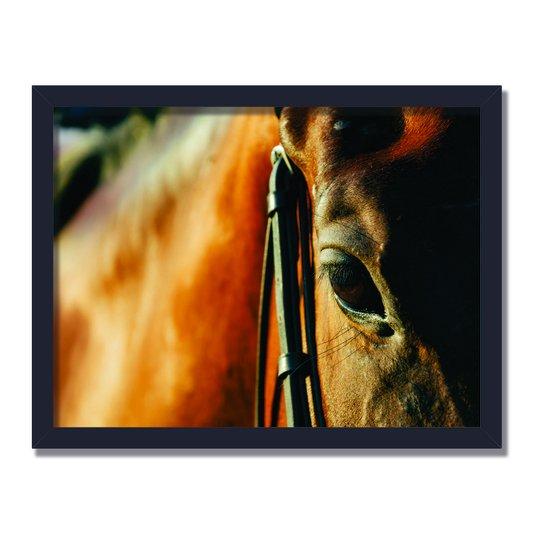 Quadro Decorativo Foto Cavalo