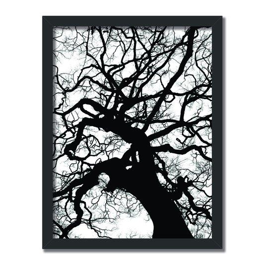 Quadro Decorativo Preto e Branco Galhos de Árvore