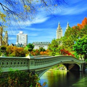Placa Decorativa Ponte Central Park, New York City