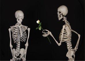 Placa Decorativa Esqueletos Românticos