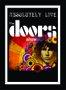 Placa Decorativa Poster The Doors