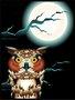 Paca Decorativa Infantil Coruja e a Lua