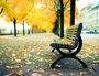 Placa Decorativa Folhas de Outono no Banco