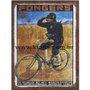 Placa Decorativa Bicicleta Fongers