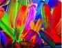 Placa Decorativa Flores Abstratas