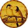Placa Decorativa Redonda Pássaros