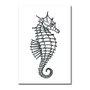 Placa Decorativa Coleção Mar Cavalo Marinho