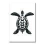 Placa Decorativa Coleção Mar Tartaruga