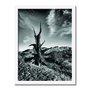 Quadro Decorativo Preto e Branco Árvore Morta em Deserto