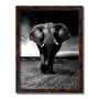 Quadro Decorativo Preto e Branco Elefante Caminhando