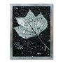 Quadro Decorativo Preto e Branco Folha de Outono com Gotas